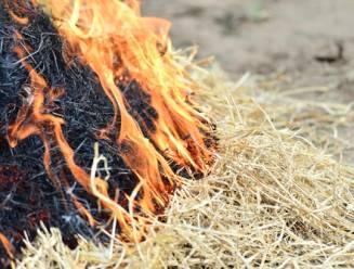 Russische meisjes steken 200 ton stro in brand voor TikTok-video