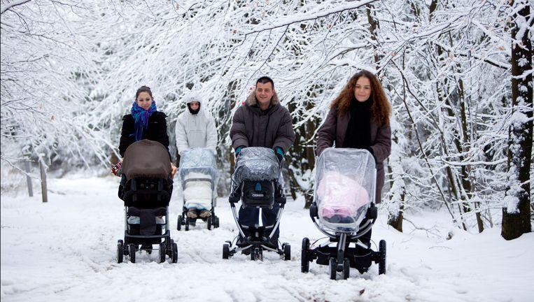 Sneeuw in de Ardennen Beeld photo_news