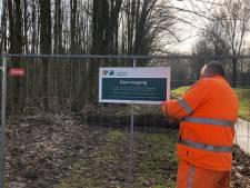 Recreatiebos in de Biesbosch gesloten vanwege boomsterfte