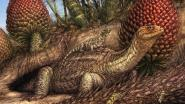 Wetenschappers ontdekken tumor bij 240 miljoen jaar oude voorouder van de schildpad