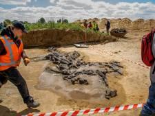 De oude vondsten bij de Maas zijn bijzonder genoeg voor een 'internationaal' museum