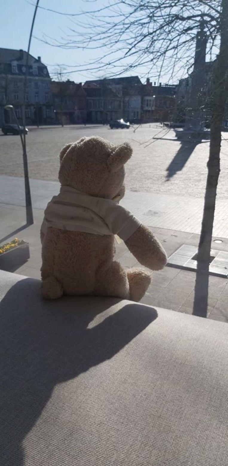Deze beer staat te wachten om gespot te worden op de Grote Markt in Ronse.