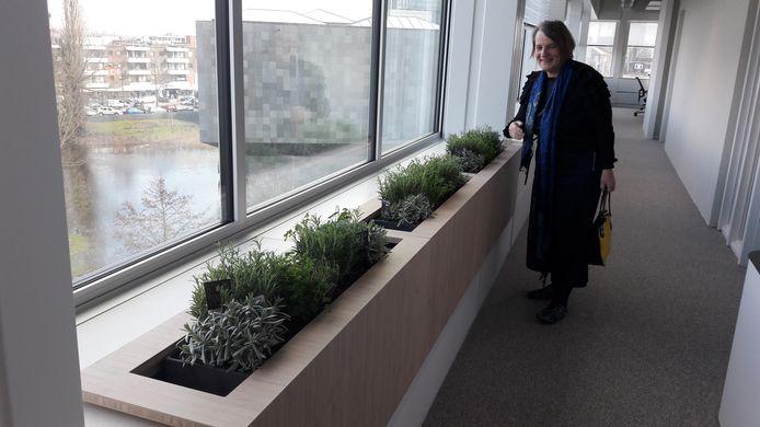 Ook de plantenbakken, vensterbanken en platen in de Stadhuistoren Eindhoven zijn gemaakt van hergebruikt materiaal. Wethouder Mary-Ann Schreurs gaf een rondleiding.