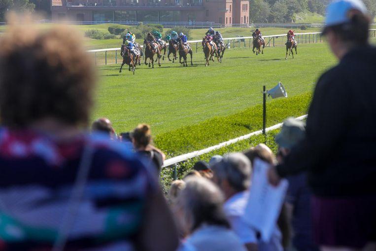 De paarden met jockeys racen voorbij de tribune.