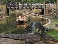 DierenPark Amersfoort trekt ruim tien procent minder bezoekers