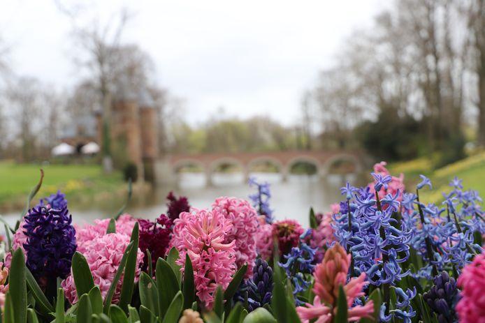 Floralia Brussels in Groot-Bijgaarden is een leuke lente-uitstap voor jong en oud.