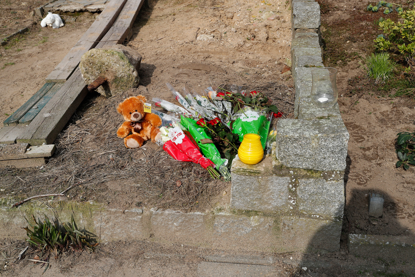 Bloemen in de Krokusstraat in 's-Heerenberg
