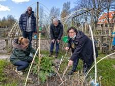 Politiek wil oplossing voor hobbytuinen: 'Geen nette manier om met stadsgenoten om te gaan'