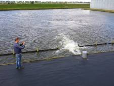 Rainlevelr neemt enorme vlucht: al 44 telers helpen met bassin mee tegen wateroverlast