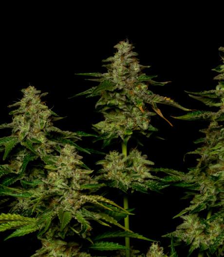 Bewoner drugswoning Groenlo al ruim een week spoorloos