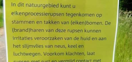 Waarschuwing voor eikenprocessierups in Park Lingezegen en 'kleine' Rijkerswoerdse plas