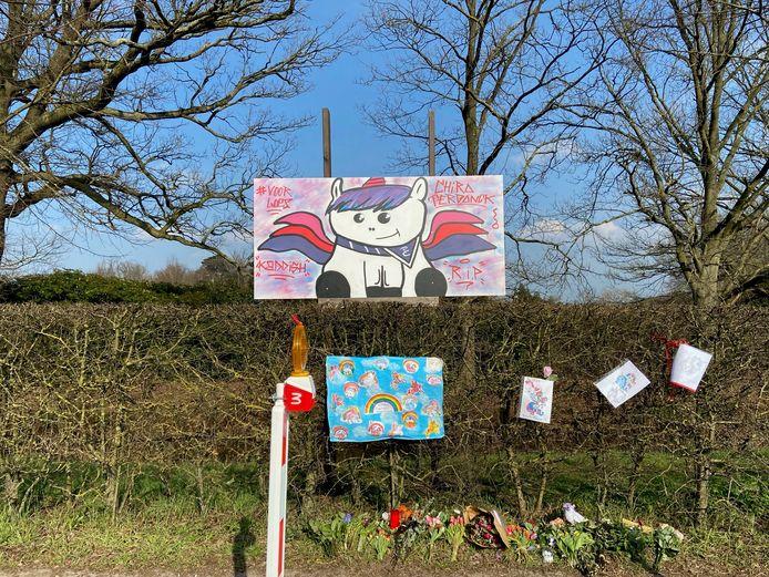 De vele knuffels, tekeningen en bloemen aan het kruispunt waar Loes de Laat (7) om het leven kwam, zijn weggehaald in overleg met de ouders. Wel staat er nu het kunstwerk van Jeugdhuis Kaddish en Chiro Terdonck