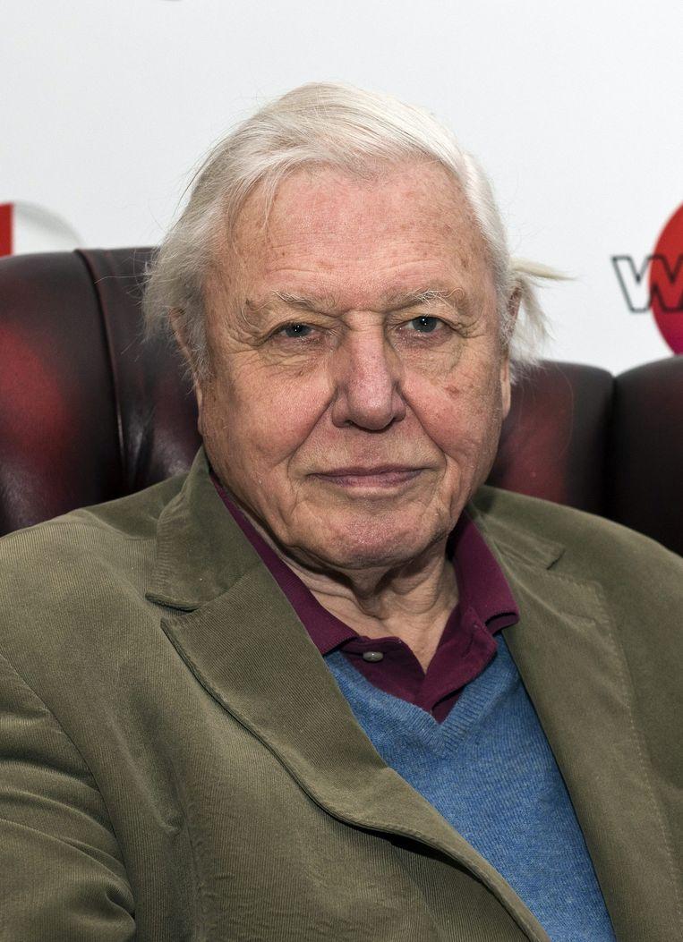 Sir David Attenborough. Beeld EPA