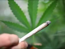 Une tonne de cannabis saisie dans un camion belge