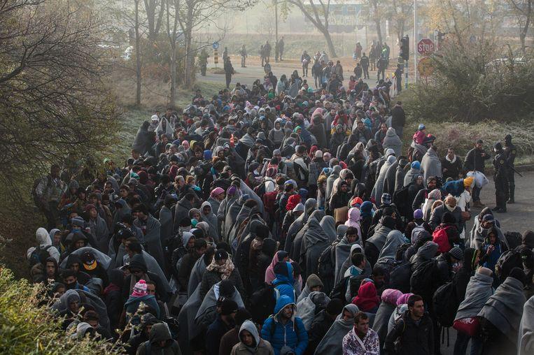 Vluchtelingen lopen in de richting van het vluchtelingenkamp in Sentilj in Slovenië Beeld photo_news