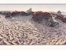 Drentse landschappen te zien tijdens najaarsexpositie beeldentuin Wildschutserve in De Stapel