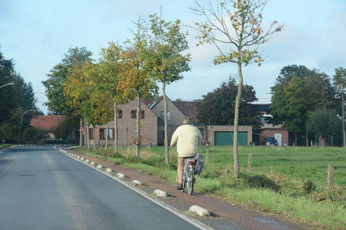 De fietspaden worden afgefreesd en opnieuw geasfalteerd. Nu zijn er overal putten en is het fietspad overwoekerd met onkruid.