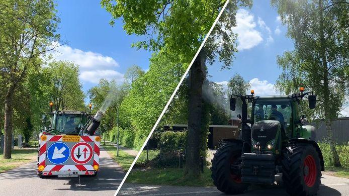 Xentari komt er niet meer in bij de gemeente Hattem. Tien jaar lang werd het omstreden middel ingezet tegen de eikenprocessierups.