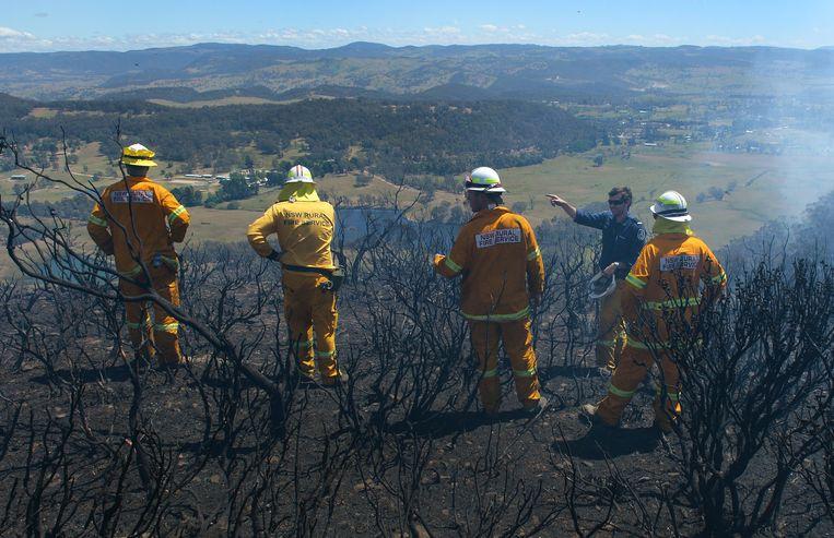 2013-10-23 SYDNEY - De Australische autoriteiten hebben duizenden mensen opgeroepen hun huis te verlaten in verband met de aanhoudende bosbranden in een natuurgebied bij Sydney. Door de brand is sinds vorige week donderdag 120.000 hectare gebied verwoest. Ongeveer 200 huizen zijn in vlammen opgegaan. AFP **FOTO IS EENMALIG RECHTENVRIJ VOOR REDACTIONEEL GEBRUIK** Beeld AFP