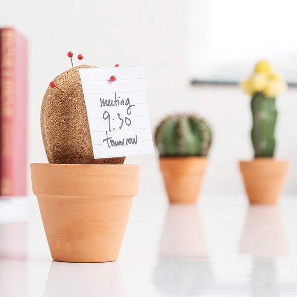 Cork Cactus, 14,75 euro.
