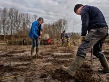 Etten-Leur krijgt een nieuw natuurgebied