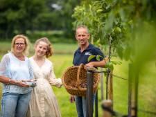 Melkveehouder René uit Beuningen stapt over op walnootteelt: 'Dit levert meer op en kost minder tijd'