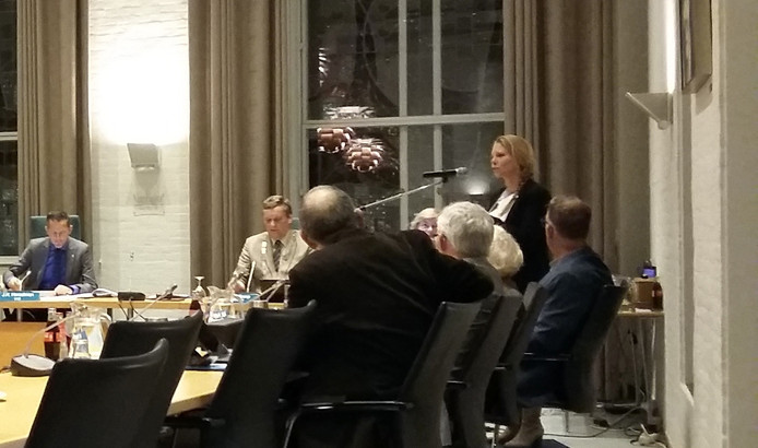 Andrea Meijer spreekt na haar beëdiging de Kapelse gemeenteraad toe.