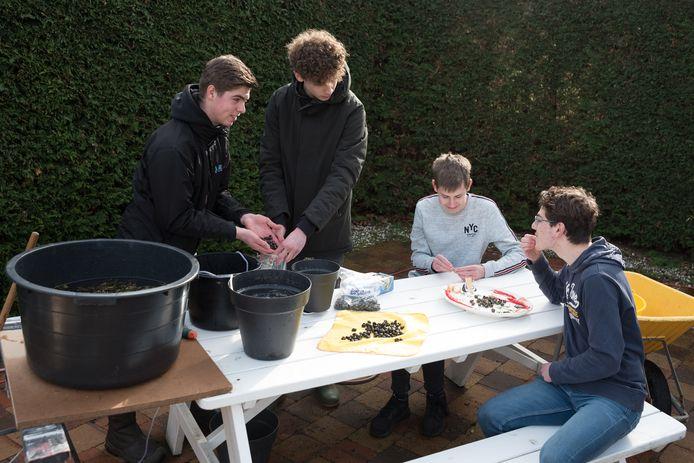 Tom Smits, Maurits Neele, Toine Kuipers en Ruben van Putten (vlnr) maken de krukels schoon.