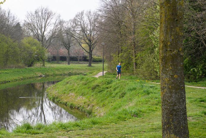 In Borne gaat gestart worden met de preventieve bestrijding van de processierups. Zo ook bij de bomen in de omgeving van de Wanne.