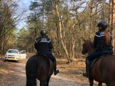 Hondenbezitters bekeurd voor loslopende honden op Vrachelse Heide