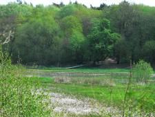 Hoe komen padden en slangen veilig van Renkums Beekdal naar de uiterwaarden van de Rijn?