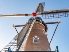 Hilvarenbeekse molen de Doornboom straalt als nooit tevoren