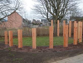 Troostplek in Welle krijgt vorm en is vanaf 13 maart te bezoeken