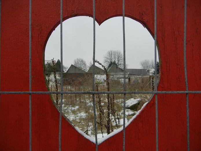 Hart in de rode schutting bij het Piusplein. Foto Ailsa Rainer.