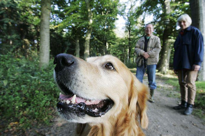 De hondenbelasting gaat in Utrechtse Heuvelrug misschien verdwijnen.