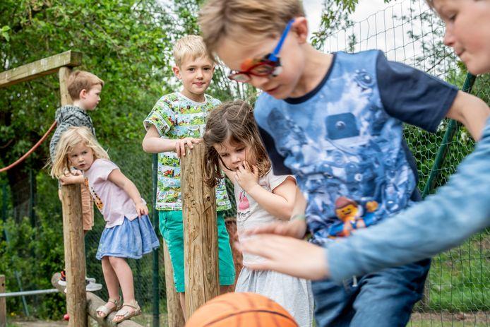 Klimmen en klauteren op het domein van  Freinetschool De Bonte Specht