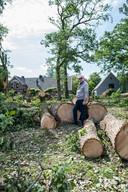 Van de omgevallen bomen bij de Carolinahoeve zijn al stammetjes gezaagd.