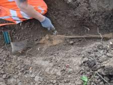 Defensie vindt in Bemmel stoffelijke resten van Britse soldaat uit Tweede Wereldoorlog