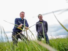 Joost en Christiaan uit Ens hebben de eerste veganistische boerderij van Nederland