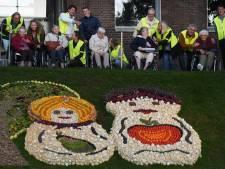 Rotary brengt hulptroepen mee om samen met 50 ouderen de mozaïeken te bekijken