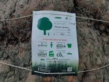 Posters vertellen verhaal van bomen