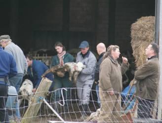 Opnieuw dieren in beslag genomen bij 'slechtste boeren van het land'