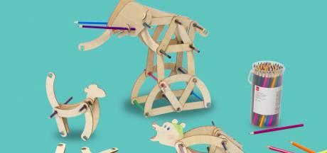 Wint dit Rotterdamse speelgoed de Hema-designprijs?