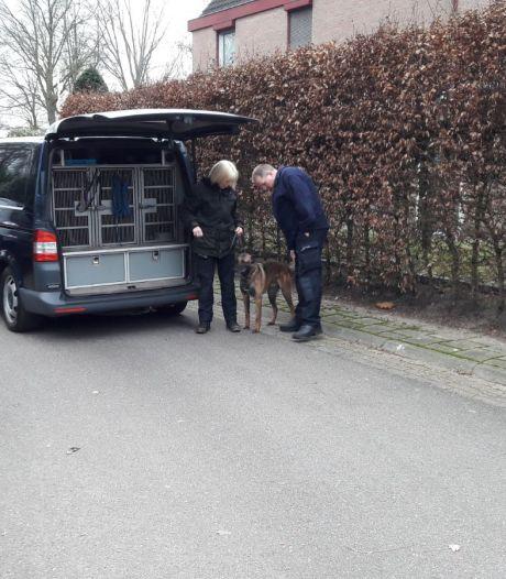 Man uit Mook verdacht van driemaal poging tot moord na geweldsexplosie in Arnhem<br>