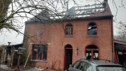 Honden- en kattenhotel uitgebrand op Nieuwjaar: vijftien katten komen om in de vlammen