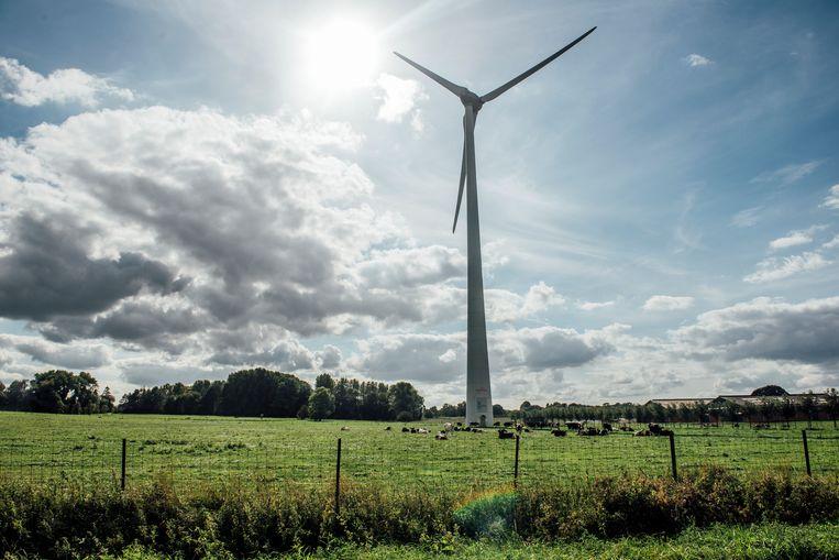Wie een grond bezit waar een windturbine op mag, kan daar makkelijk 20.000 euro per jaar krijgen. Beeld Stefaan Temmerman