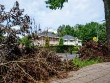 Stormschade is nog altijd niet weg in Eck en Wiel: ergernis over rondslingerende takken en bladeren