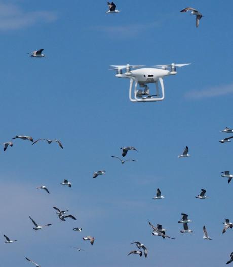 Vaccinatie per drone naar afgelegen plek op eiland