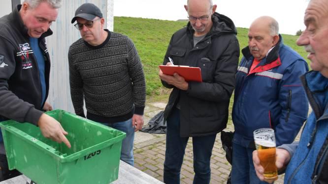 Even geen lamsoor uit Saeftinghe voor Piet; sportvissers ongerust over PFAS-vervuiling