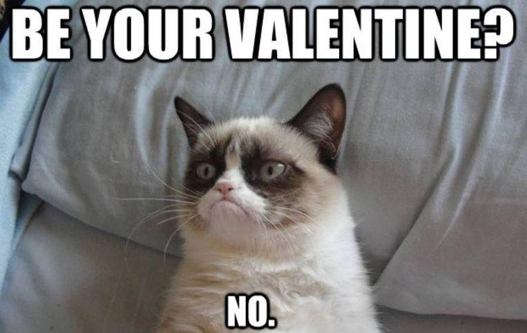 Facebook Grumpy Cat